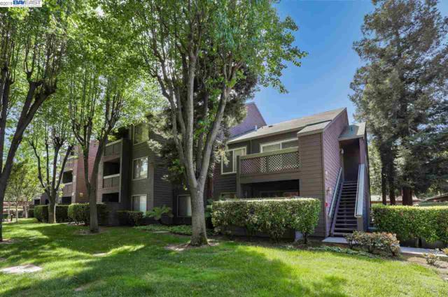 782 Teatree Ct, San Jose, CA 95128 (#BE40863018) :: Strock Real Estate