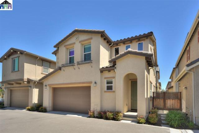 141 Misty Circle, Livermore, CA 94550 (#MR40864096) :: Strock Real Estate
