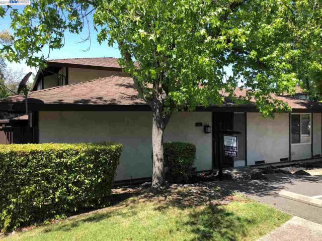 46 Via Malaga, Fremont, CA 94539 (#BE40864528) :: Strock Real Estate