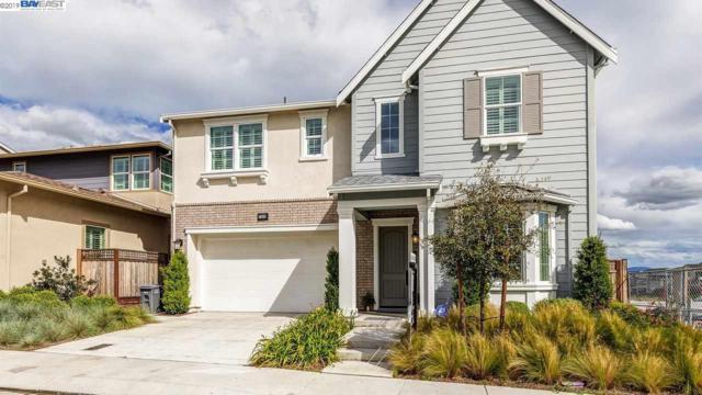 7353 Diamond Mountain Rd, Dublin, CA 94568 (#BE40866718) :: Strock Real Estate