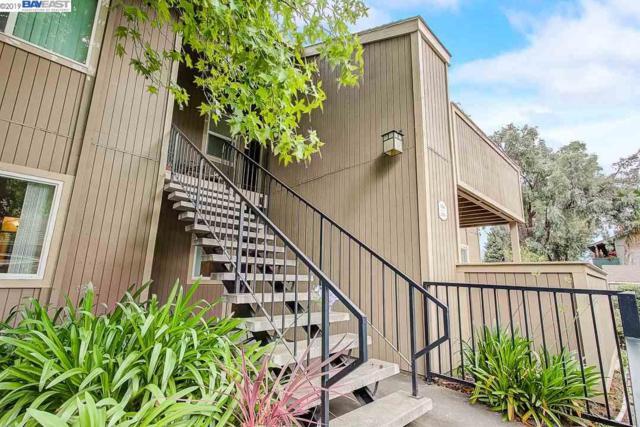 3304 Red Cedar Ter, Fremont, CA 94536 (#BE40870693) :: Strock Real Estate