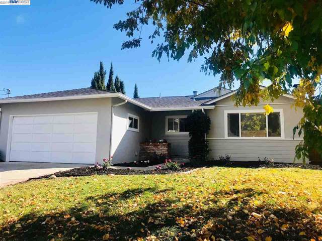2320 Rockne Dr, Concord, CA 94518 (#BE40889585) :: The Kulda Real Estate Group