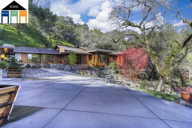 Camellia Lane, Lafayette, CA 94549 (#MR40891595) :: The Sean Cooper Real Estate Group