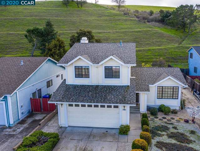 163 Finch Ct, Hercules, CA 94547 (#CC40891735) :: Intero Real Estate