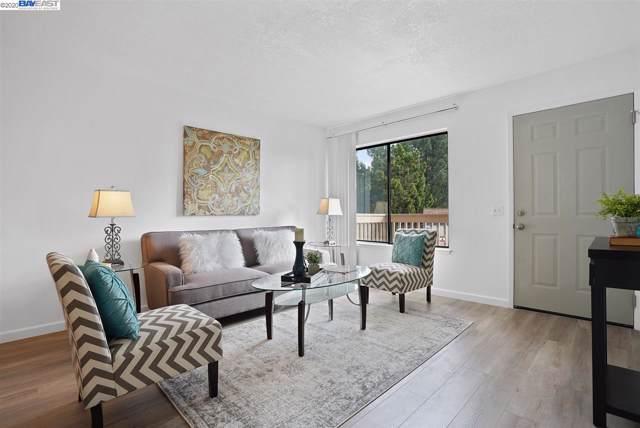 215 Galano Plz, Union City, CA 94587 (#BE40892334) :: The Kulda Real Estate Group