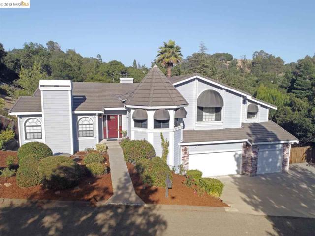 16 Mcnamara Lane, Martinez, CA 94553 (#EB40827776) :: Strock Real Estate
