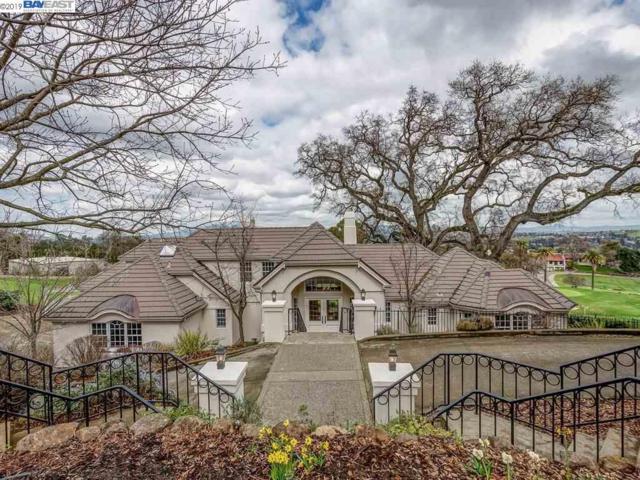 869 Castlewood Pl, Pleasanton, CA 94566 (#BE40855848) :: Strock Real Estate