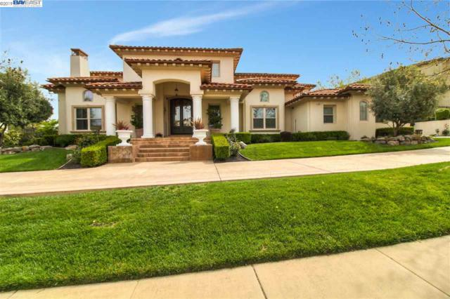 1502 Via Di Salerno, Pleasanton, CA 94566 (#BE40860558) :: The Kulda Real Estate Group