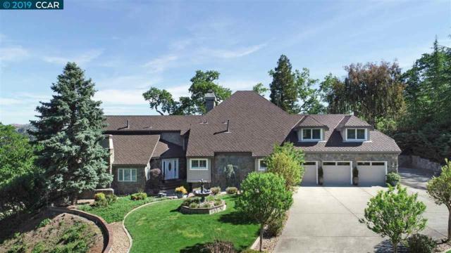 181 Alamo Ranch Rd, Alamo, CA 94507 (#CC40862525) :: Strock Real Estate