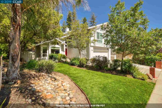 337 Macalvey Dr, Martinez, CA 94553 (#CC40863149) :: Strock Real Estate