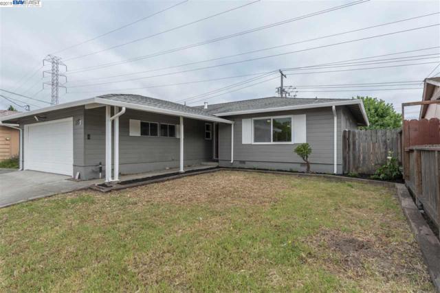 2426 Sleepy Hollow Ave, Hayward, CA 94545 (#BE40864585) :: Strock Real Estate