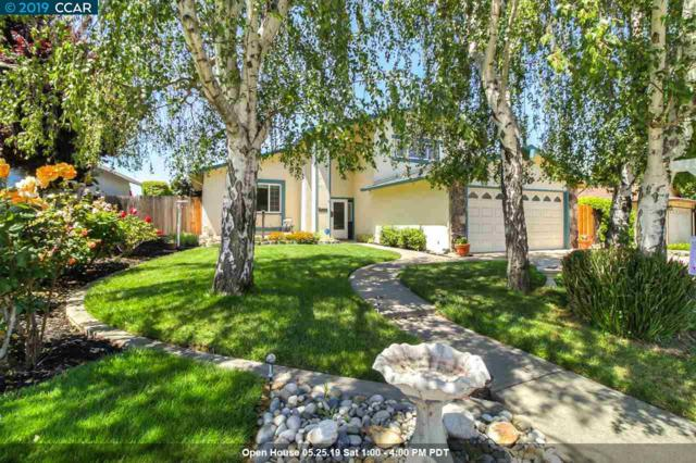 5317 Theresa Way, Livermore, CA 94550 (#CC40864597) :: Strock Real Estate