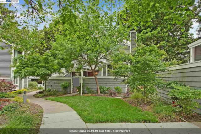 5459 Black Ave, Pleasanton, CA 94566 (#BE40864891) :: Strock Real Estate