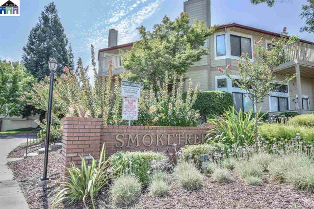 3372 Smoketree Commons Dr, Pleasanton, CA 94566 (#MR40881048) :: The Sean Cooper Real Estate Group