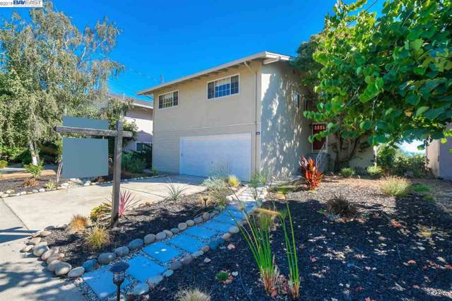 5235 Winifred Dr, Castro Valley, CA 94546 (#BE40881053) :: Strock Real Estate