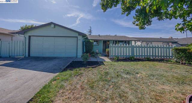35005 Begonia St, Union City, CA 94587 (#BE40886149) :: Strock Real Estate