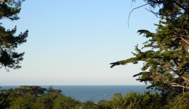 649 Lancaster Blvd, Moss Beach, CA 94038 (#ML81735022) :: Strock Real Estate