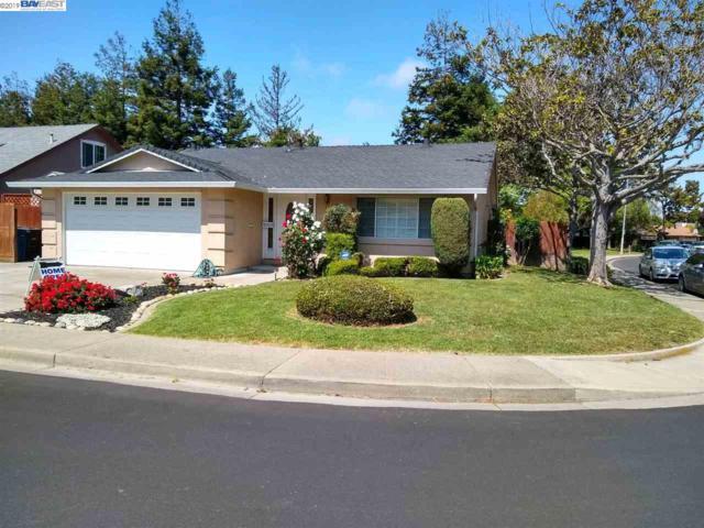 31323 Santa Fe Way, Union City, CA 94587 (#BE40852942) :: Strock Real Estate