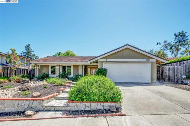 3658 Touriga Dr, Pleasanton, CA 94566 (#BE40862662) :: Strock Real Estate