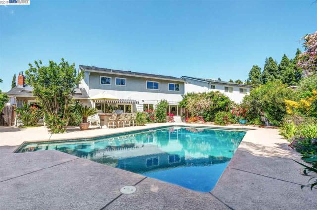 1915 Foxswallow Cir, Pleasanton, CA 94566 (#BE40863890) :: Strock Real Estate