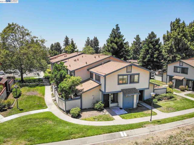 241 Galano Plz, Union City, CA 94587 (#BE40871074) :: Strock Real Estate