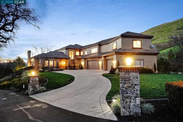 185 Chanticleer Ln, Alamo, CA 94507 (#CC40853969) :: Strock Real Estate