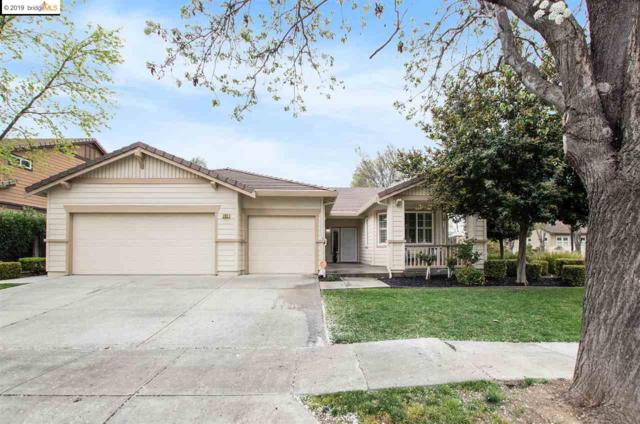 703 Nectar Dr, Brentwood, CA 94513 (#EB40859609) :: Strock Real Estate