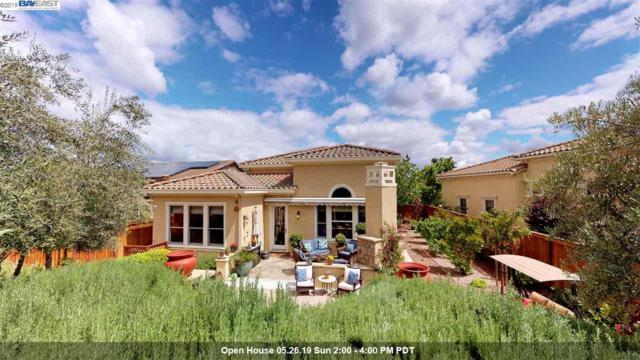 1633 Healing Rock Court, Brentwood, CA 94513 (#BE40861859) :: Strock Real Estate