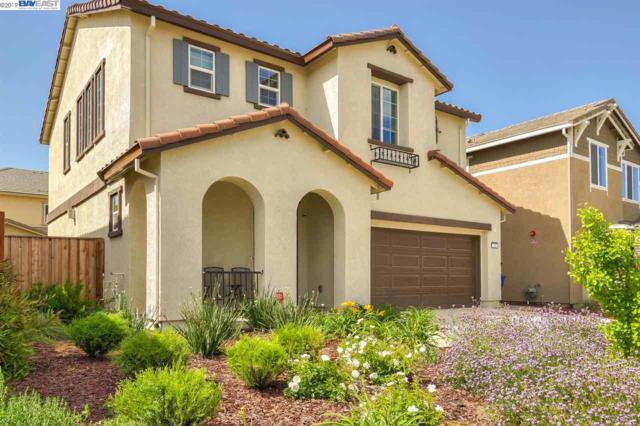 232 Coolcrest Dr, Oakley, CA 94561 (#BE40863649) :: Strock Real Estate