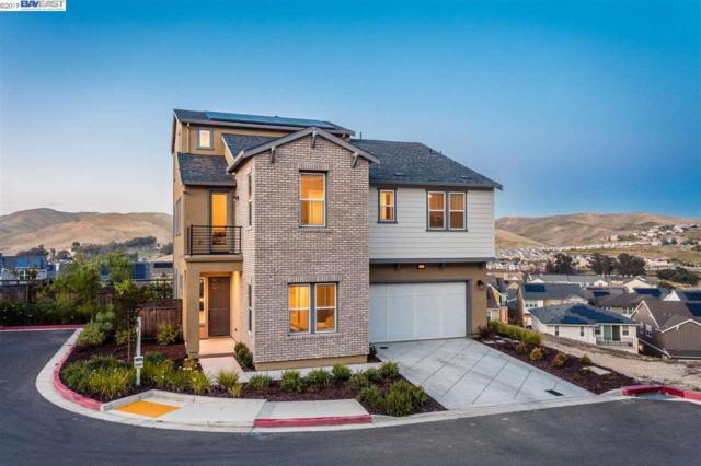 7101 Mei Fong Ct, Dublin, CA 94568 (#BE40867923) :: Strock Real Estate