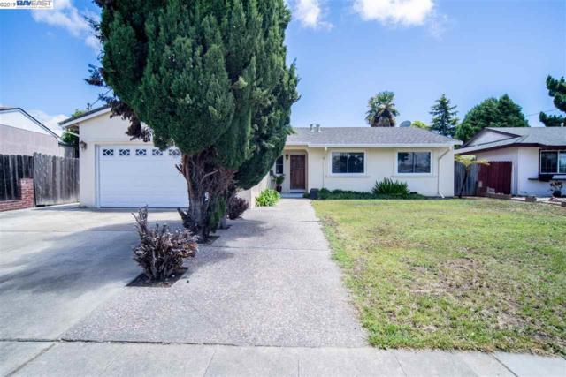 5482 Mclaughlin Ave, Newark, CA 94560 (#BE40872056) :: The Goss Real Estate Group, Keller Williams Bay Area Estates