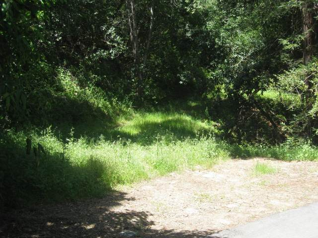 12 Montecito Rd, Woodside, CA 94062 (#ML81700401) :: The Realty Society