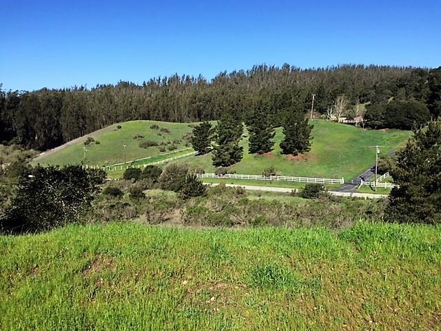200 Chateau Dr, Aromas, CA 95004 (#ML81691348) :: Intero Real Estate