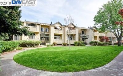3076 Fostoria Cir, Danville, CA 94526 (#BE40816037) :: Astute Realty Inc