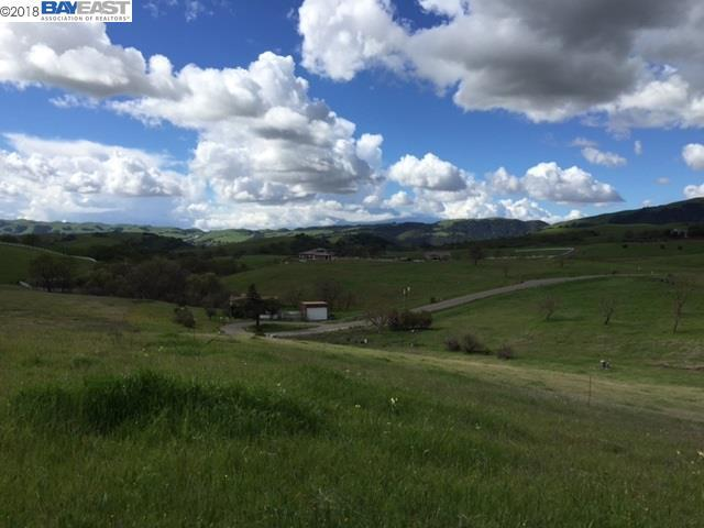7755 Laguna Heights Court, Sunol, CA 94586 (#BE40824132) :: Intero Real Estate