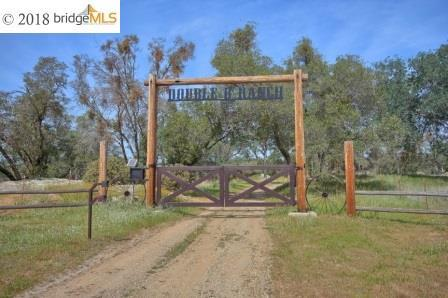 36188 N Douglas Rd, COARSEGOLD, CA 93614 (#EB40834673) :: The Kulda Real Estate Group