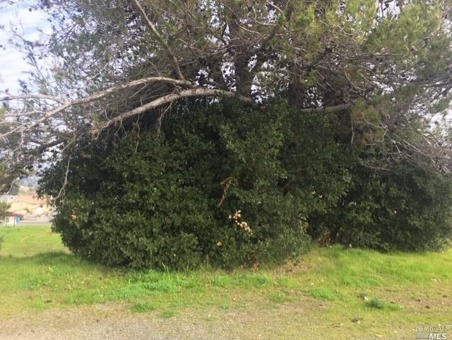 Sonoma Blvd., Vallejo, CA 94590 (#MR40852007) :: Strock Real Estate