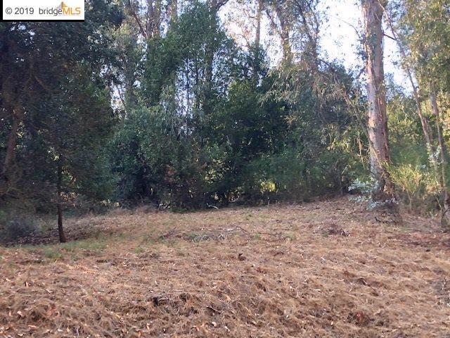 1 Lauriston Ct, Oakland, CA 94611 (#EB40887295) :: The Sean Cooper Real Estate Group