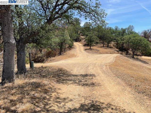 0 Mines Rd, Livermore, CA 94550 (#BE40953969) :: The Sean Cooper Real Estate Group