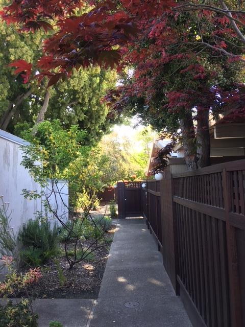 110 Ferne Ave, Palo Alto, CA 94306 (#ML81701962) :: von Kaenel Real Estate Group