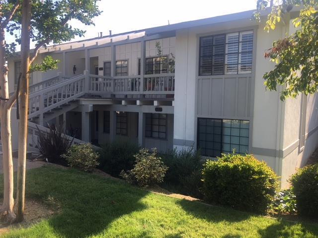 5412 Cribari Ct, San Jose, CA 95135 (#ML81706791) :: Julie Davis Sells Homes