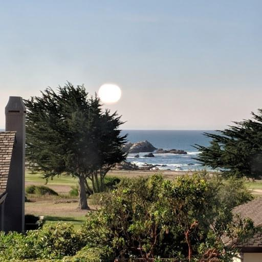 1017 Rodeo Rd, Pebble Beach, CA 93953 (#ML81709491) :: von Kaenel Real Estate Group