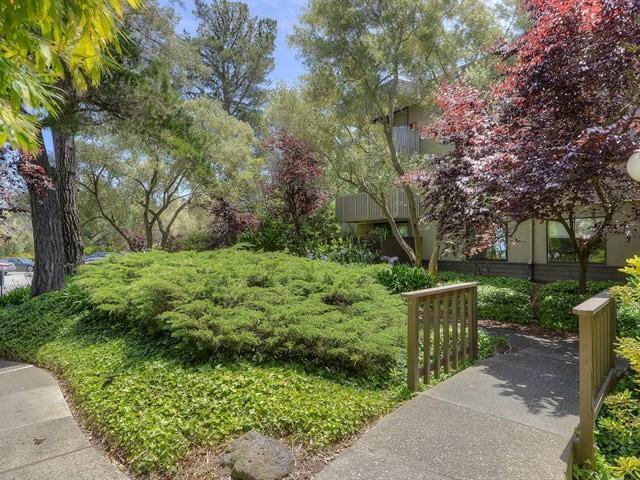 4322 Shelter Creek Ln, San Bruno, CA 94066 (#ML81709797) :: Strock Real Estate