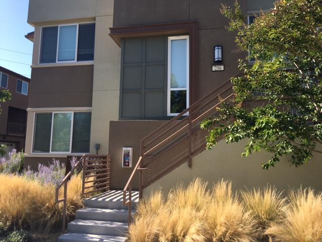 256 Odyssey Ln 25, Milpitas, CA 95035 (#ML81710847) :: The Gilmartin Group