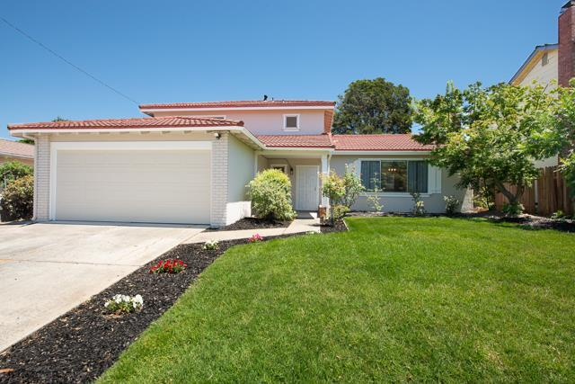 1490 San Marcos Dr, San Jose, CA 95132 (#ML81711599) :: Julie Davis Sells Homes