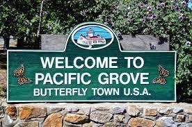 1007 Hillside Ave, Pacific Grove, CA 93950 (#ML81712671) :: Brett Jennings Real Estate Experts