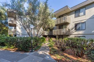 1255 Shelter Creek Ln, San Bruno, CA 94066 (#ML81714624) :: The Goss Real Estate Group, Keller Williams Bay Area Estates
