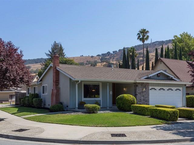 502 Los Pinos Way, San Jose, CA 95123 (#ML81719396) :: von Kaenel Real Estate Group