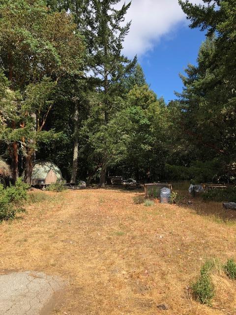 14442 Skyline, Woodside, CA 94062 (#ML81721064) :: Strock Real Estate