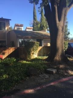 507 Dix Way, San Jose, CA 95125 (#ML81726864) :: The Gilmartin Group